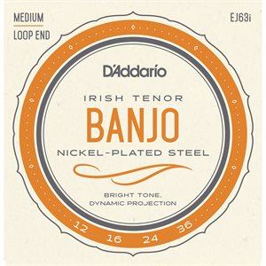 DADDARIO EJ63I IRISH TENOR BANJO STRINGS, NICKEL, 9-30