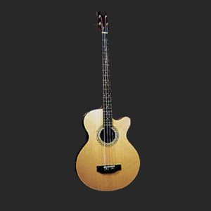JAY TURSER JTB-D100 ACOUSTIC BASS HIGH GLOSS